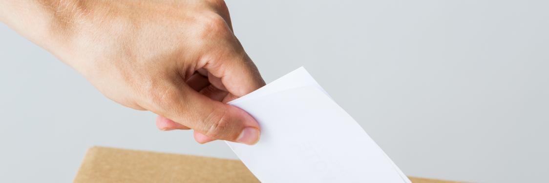 brevafstemning